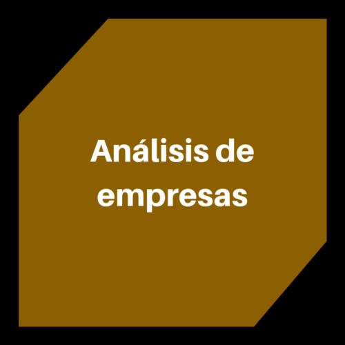 Anàlisi d'empreses